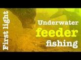 First light - Underwater feeder fishing - Breamtime E9 S3