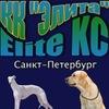 Elita Kinologichesky-Klub