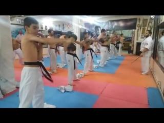 Жёсткостью ударов руками, СФП верхнего плечевого пояса в Кёкусинкай карате. Подготовка бойца http://vk.com/oyama_mas