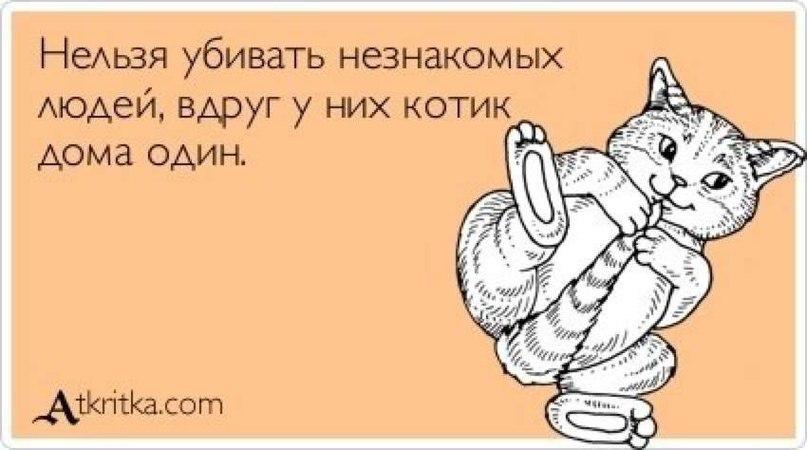 http://cs416622.vk.me/v416622624/33fb/rIR6tPyCbz4.jpg