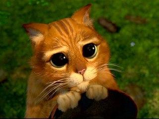 Кіт у чоботях   ВКонтакте