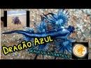 Biologia: Dragão Azul (Glaucus atlanticus)   Ciências Gerais