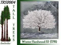 Winter Hrdwd 12 18m