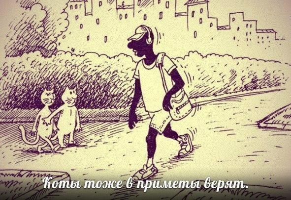 http://cs405727.vk.me/v405727323/a665/_uICtYcCsmY.jpg
