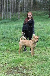 Полина Спасовская, 21 мая , Белгород, id84195027