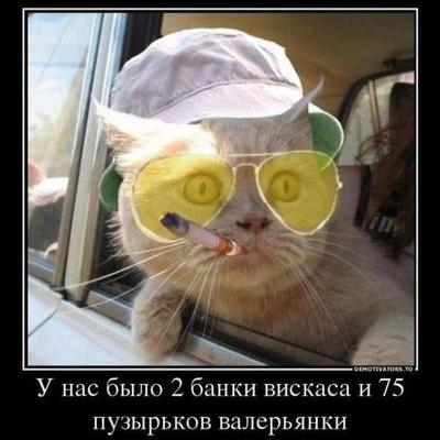 Евгений Михайлович, 7 августа , Ростов-на-Дону, id177891629