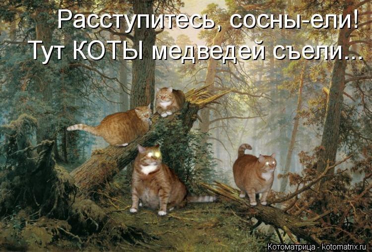 http://cs406129.userapi.com/v406129820/2d36/w8itVsYilMI.jpg