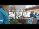 ORGANIZAÇÃO XIITA Sem Desandar Feat. T.A.T.E Clipe Oficial