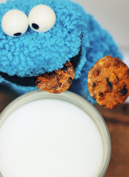 Знаете, это поедание печенья такое трогательное занятие!… (5 фото) - картинка