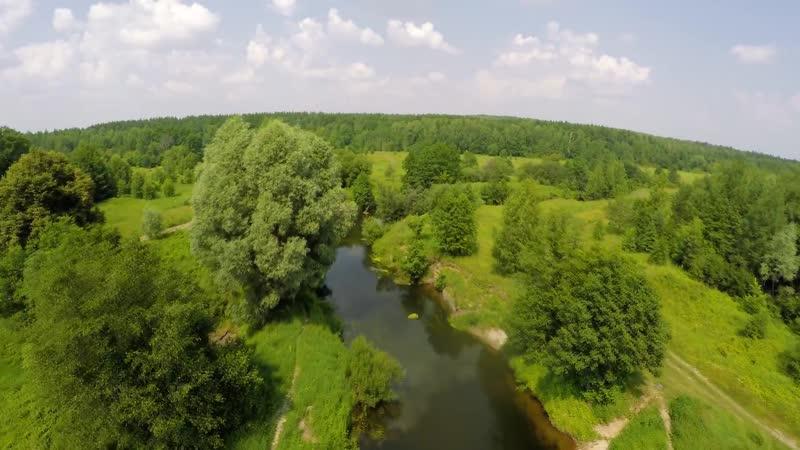 Вдоль реки Кудьма в древней лес Зелёного города 9 июня 2019