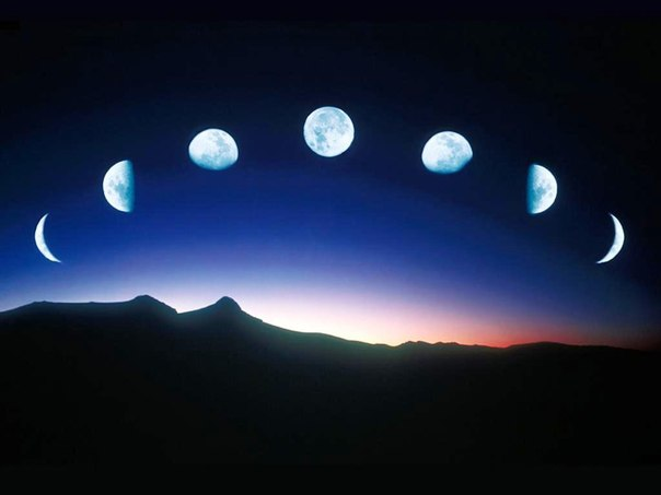 в последнюю Четверть Луны.
