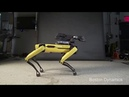 You reposted in the wrong neighborhood Boston Dynamics Edition