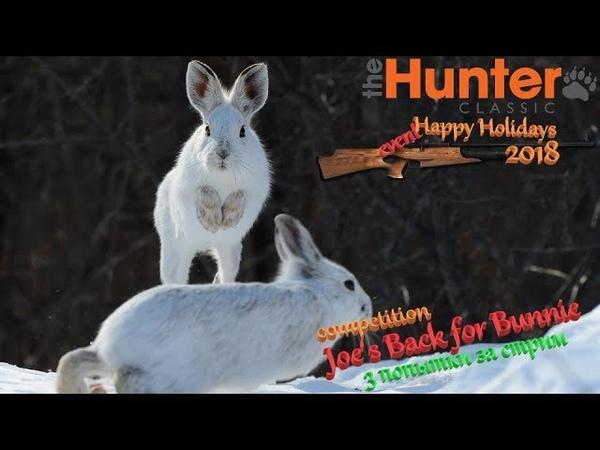 TheHunter Classic 33Joes Back for Bunnie3 попытки за стримСоревнование на беляка