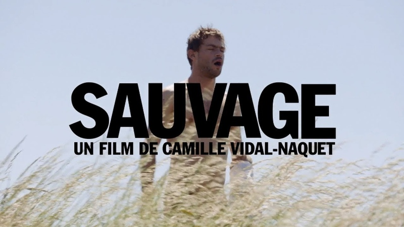 Sauvage (2018) VO ST FRENCH Streaming XviD AC3