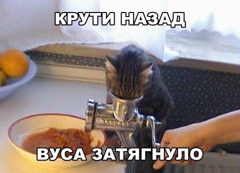 Одесские медики помогали иностранцам легализоваться посредством фиктивных браков - Цензор.НЕТ 226