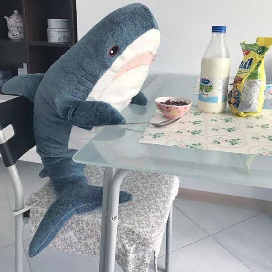 Sad, Plush, Shark, Toy