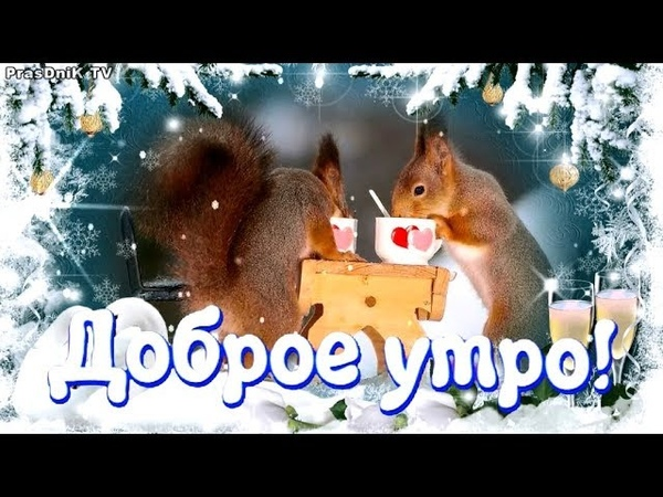 Зимнее пожелание с добрым утром Доброе утро и Хорошего дня
