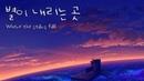 [피아노 음악] 별이 내리는 곳 / Where the stars fall - 레브 (Reve)