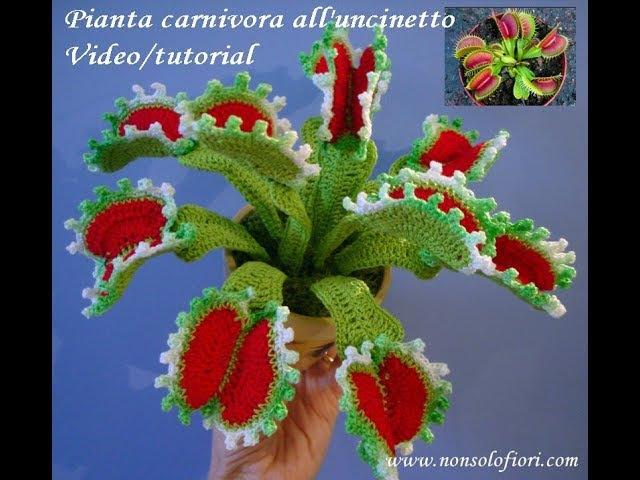 Pianta carnivora all'uncinetto Carnivorous plant crochet