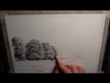 Рисуем деревья карандашом
