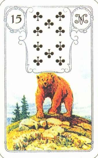 15. Медведь  PH5OhUSCg4k