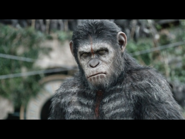 «Планета обезьян: Революция» (2014): Японский тизер / www.kinopoisk.ru/film/646674/