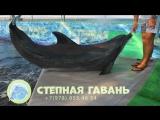 Общение с дельфином на базе отдыха Степная гавань 2018