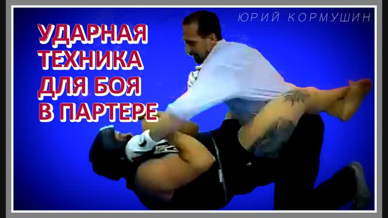Ударная техника для боя в партере | Юрий Кормушин