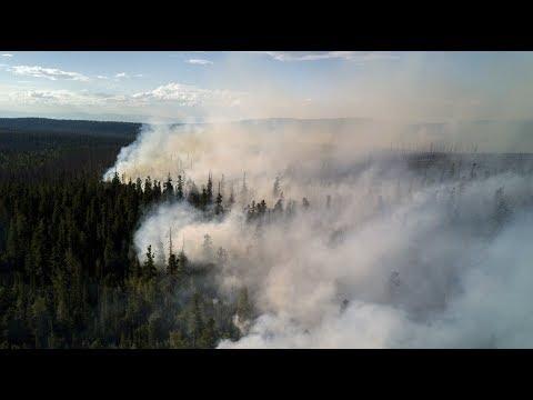В Забайкалье из за грозы загорелись леса
