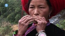 Jew's harp Guimbarde Hmong Vietnam