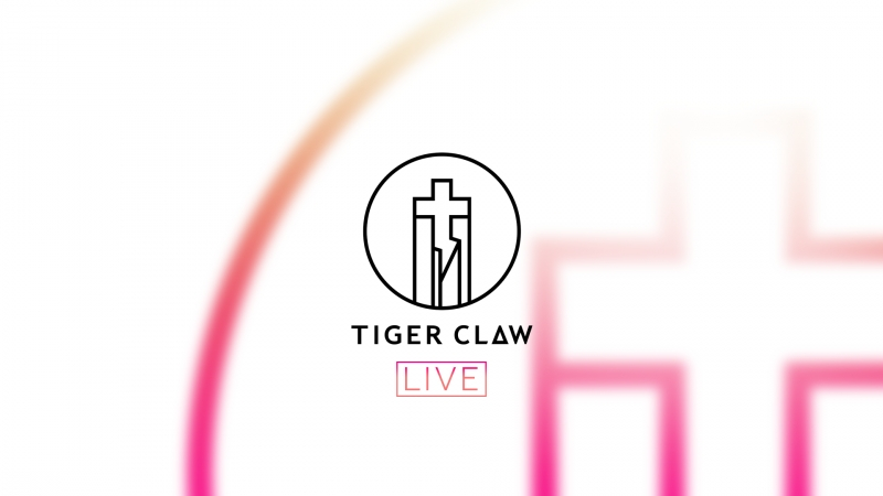 Tiger Claw BESPREDEL NA HATE 11 03 2018