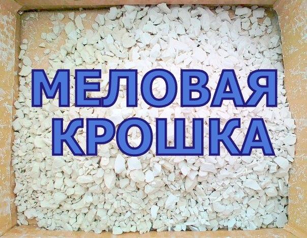 Природный мел, Кормовой мел. ахатина, улитка, кормовой мел, санкт-петербург