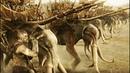 Харадримы на слонах нападают на Эорлингов | Властелин колец: Возвращение короля (2003)