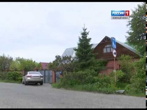 Растения экзоты на Урале. Челябинск