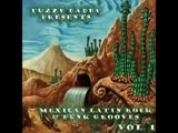 VA - Fuzzy Daddy Presents 60s - 70s Mexican Soul Latin Rock Funk Grooves Vol 1 Music Compilation