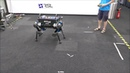 Learning agile and dynamic motor skills for legged robots