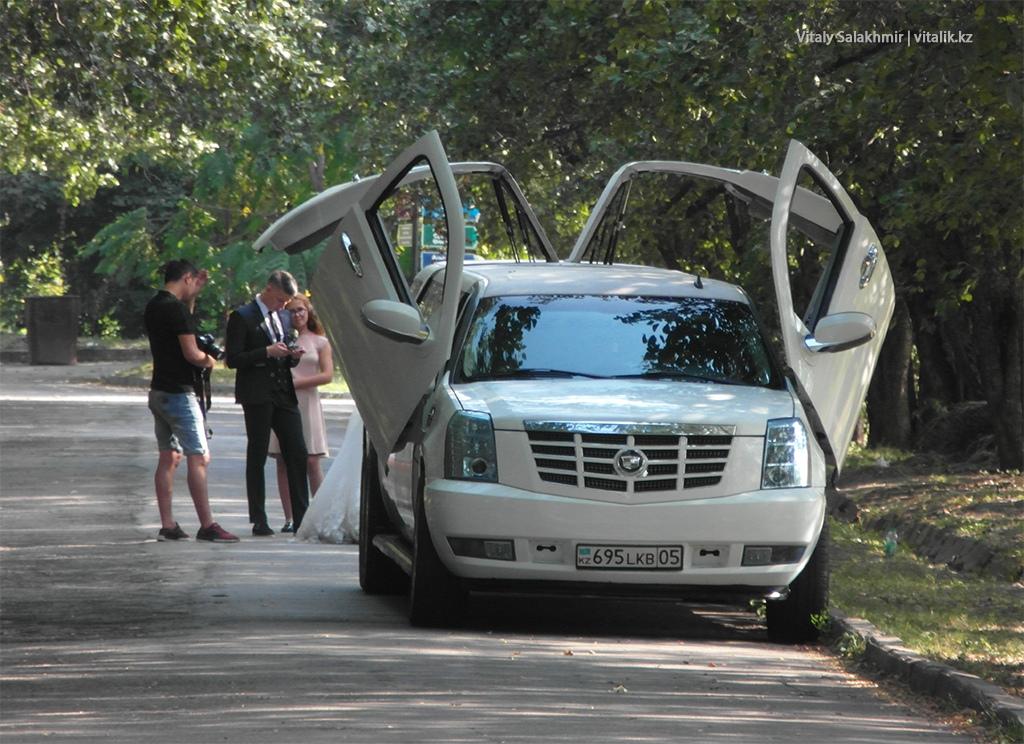 Лимузин внутри Ботанического сада Алматы 2018