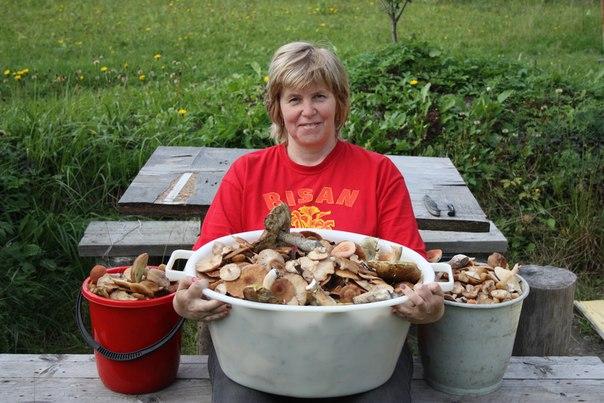 Грибы и грибные блюда. QdbYavQRFTY