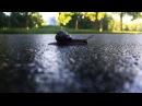 Lada_cr video