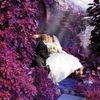 Свадебный Фотограф Белово