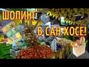 ЦЕНЫ на продукты в КОСТА РИКЕ / Стоимость жизни КОСТА РИКА