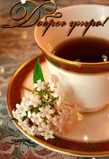 С добрым утром,друзья! Желаю большой и доброй удачи! Пусть она всегда будет с вами, пусть с её помощью любые проблемы будут решаемы, а жизнь становится чудесней, ярче и удивительней.