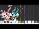 Tiny Toons Theme | Piano COVER Synthesia |