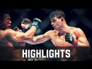 Michael Bisping vs. Cung Le ● Fight Highlights ● HD