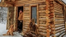 Off Grid Log Cabin Alone with my Dog in an Ice Storm