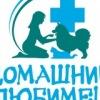 Domashny Lyubimets