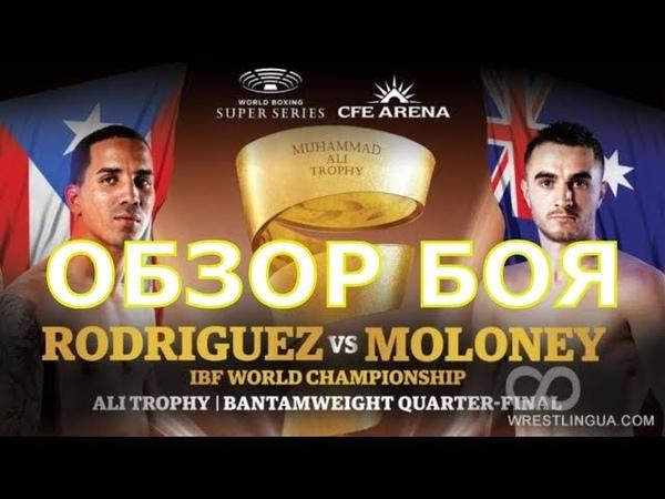 Обзор титульного боя Эммануэль Родригес - Джейсон Молони. 1/4 финала WBSS!