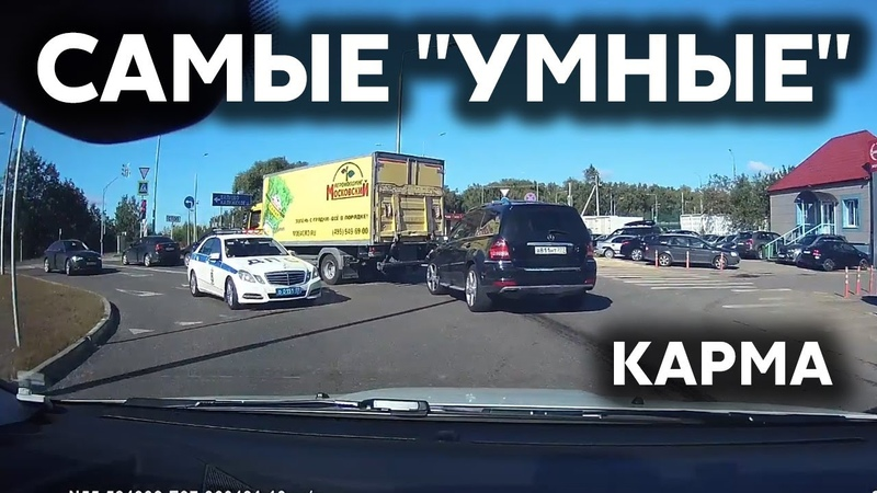 Подборка САМЫХ УМНЫХ водителей 199