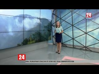 В Ялтинских горах сотрудники МЧС борются с новым возгоранием
