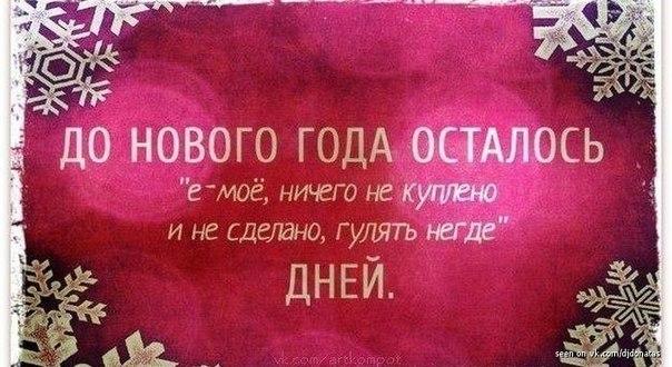 http://cs402917.userapi.com/v402917021/70ce/G6qBCfelEqQ.jpg